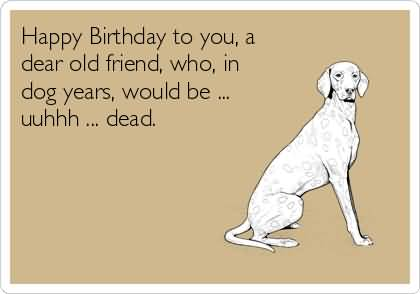 Funny Birthday Messages Memes Images Happy Pictures